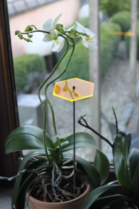 sunart No. 06s small strahlend gelborange / 40 cm