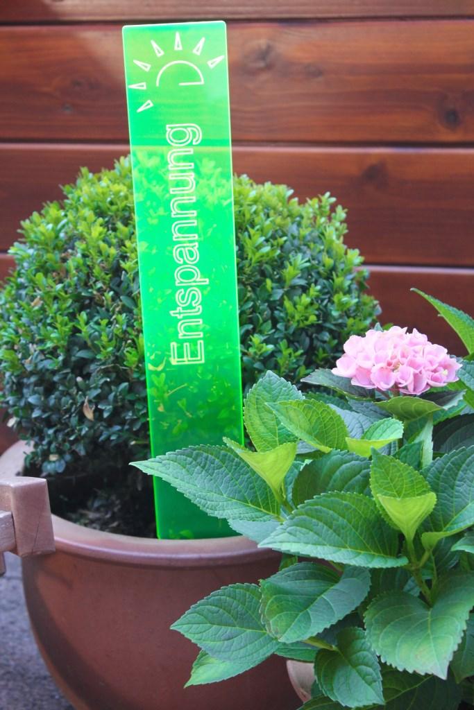 sunart DenkMal No. 03s Entspannung zuversichtlich grün