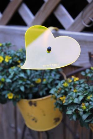 sunart heart strahlend gelborange / 40 cm